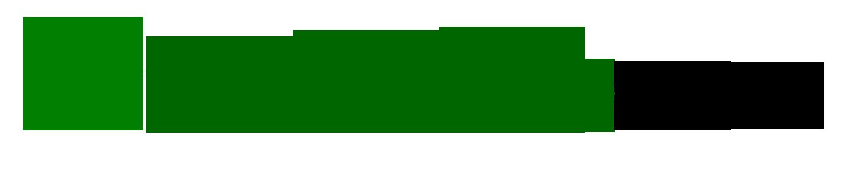 TecnicoWeb
